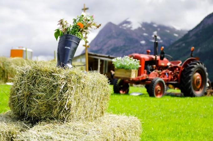 dekor traktor